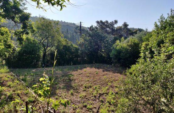 Terrain de 627 m² pour villa T4